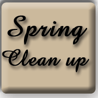 VancouverMaidService Spring Clean